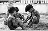 indio-pb-flickr (dereckesanches) Tags: brazil people brasil seaside nikon native indian culture tribe indien indio tribo incas brésil nativeindian xavante indische terena sanches pataxo brazilianindian d80 paresi xerente tupiniquins manoki nikond80 diadoindio karaja indigenousnationalfestival mehinako dereckesanches derecke pueblosindigenas indigenenvölker nationaldayoftheindianinbertioga dayoftheindianinbrazil dayoftheindian festivalnacionaldaculturaindigena niamissum jachasicuri viiiindigenousnationalfestival2009 festadoindio2009 indianfest2009