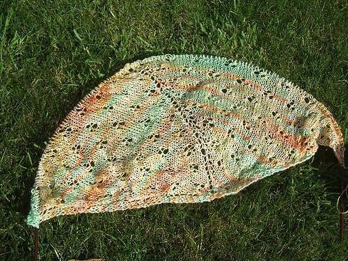 Daffodil shawl