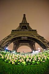 Eyefull Tower