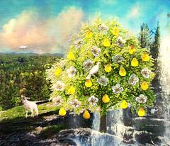 "The Prayer Tree (Painting treatment for ""Emily's Mountain""):  Happy Mother's Day! (ArteZoe) Tags: mountain tree composite photoshop waterfall pears faith prayer vision lamb spiritual healing heavenly treeoflife lambofgod artezoe illustrationforshortstory"