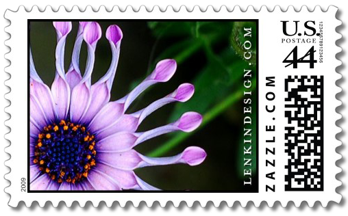 African Daisy stamp