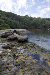 Escape from the hustle and bustle (Wanderer and Wonderer) Tags: people beach nature water rocks harbour sydney reserve australia nsw wollstonecraft berryisland ballsheadbay urbanandnaturalbalance