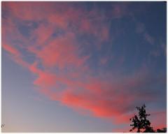 sunset1208b