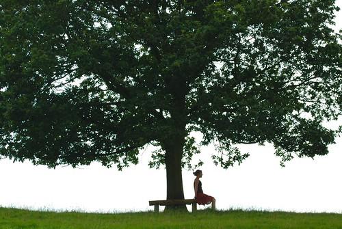 Tree Life by snaphappyraa.
