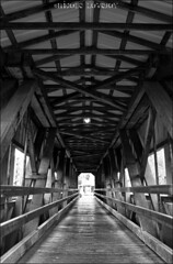 Inside Centennial Covered Bridge (Nicole R. Denny Photo & Design) Tags: bridge bw architecture oregon centennial nicole grove cottage covered lovejoy
