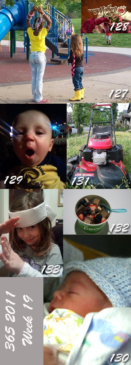 365 2011: Week 19
