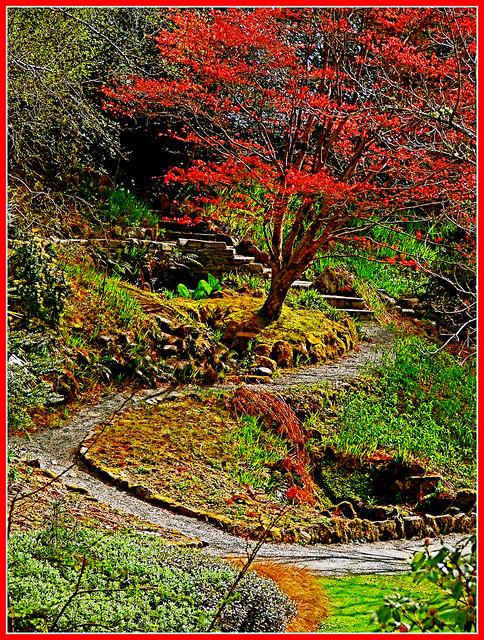 In Glenveagh Castle gardens. by Geoff. McElwaine