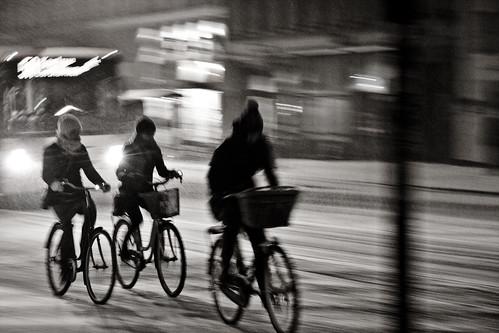 Snowstorm Trio