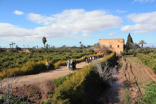Marrakesh park