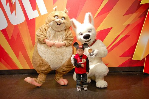 With Bolt and Rhino