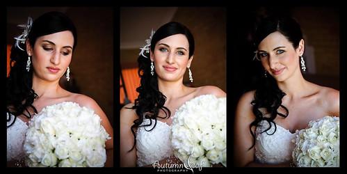 Kelly Portrait Triptych
