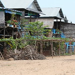 Campong Phluk (63) thumbnail