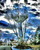 Water Tower Morphing into a Tree (Rusty Russ) Tags: tree time lapse water tower march hill newburyport ma usa solar system universe earth geo cloud year photoshop yahoo google flickr image blue red rose birthday flying cars northern lights germs worms arizona california supply newburyportmassachusetts townof massachusetts plumisland northmassachusetts northshore newengland bythesea harbor frontocean beachocean retouching photoediting photo photography freeediting howtocolor controlcolor photolight photographylighting stumbleupon interesting manipulated freeimage picasa newsroom creative color surreal avant guarde