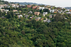 Clairemont Canyon