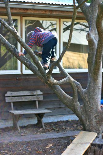 play group :: climbing