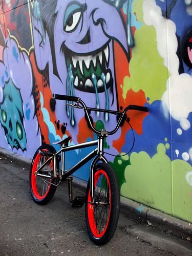 2009-05-20 my BMX