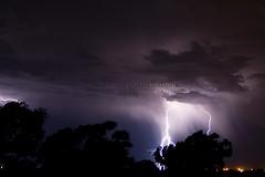 Da Lights Over Headrick 1 (gmp1993) Tags: trees sky cloud tree oklahoma rain weather clouds skies glenn patterson thunderstorm lightning thunder headrick gmp1993