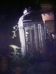 jaula (rosa_rusa) Tags: madrid espaa jaula spain cage sunplus heartinacage rosarusa