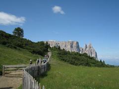 Dolomites - Escursioni in Dolomiti : Sciliar, Schlern, Alpe di Siusi, Seisler Alm.
