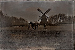 The old Mill (h.koppdelaney) Tags: world old horse art mill field fashion digital photoshop work landscape spirit earth mother farmer freilichtmuseum archetype detmold graphicmaster