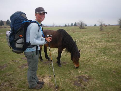 Misti with wild Pony