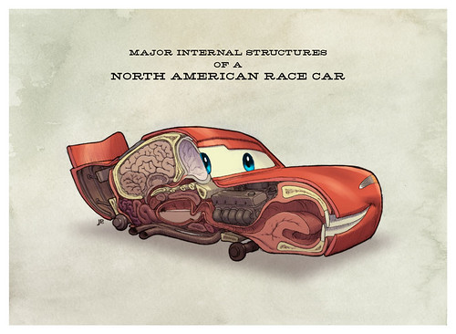 Major Internal Structures of a North American Race Car