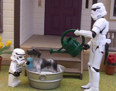 Wash Day. (waihey) Tags: flowers dog house grass bath lego stormtroopers wash sponge wateringcan hasbro plantpots sylvanianfamilies