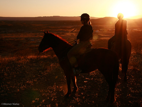 West Texas horseback riding