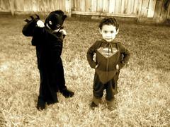 MY SUPERHEROES (AlvarezAndz) Tags: costumes boy halloween boys muscles grass fence pose toddler photographer posing images superman just more nephew than batman sacramento alvarez fotografo attire