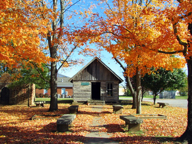 Davy Crockett Museum & Fall Foliage
