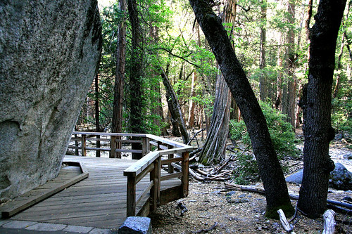 Yosemite, June 2007