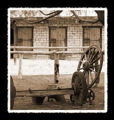 wagon wheel (Venus Oak) Tags: door newzealand tree wheel wagon country nz southisland stable