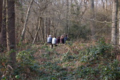 Ruislip Woods 23 (Where I am) Tags: download earlyspring sundayafternoon ruislipwoods