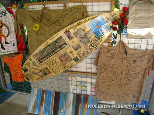 suft board for steve