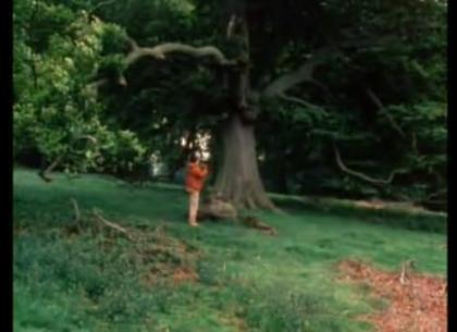 sagan_tree