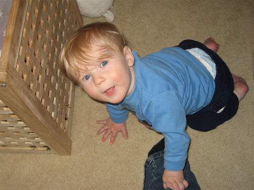 Jacob crawling up my leg