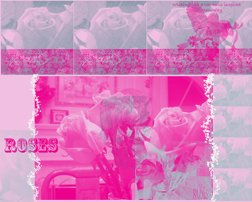 Pink Roses transparency