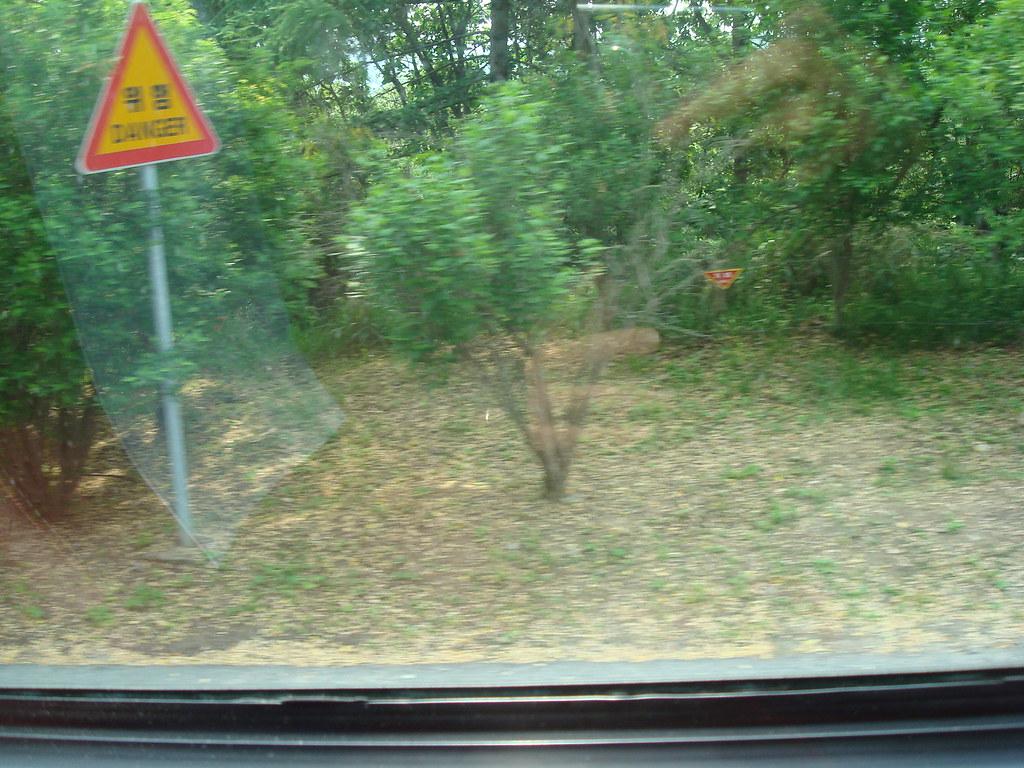沿路都是地雷