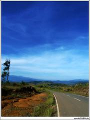 Mesilau (sam4605) Tags: road blue sky landscape scenery empty bluesky vegetable borneo mountkinabalu jalan sabah emptiness kinabalu sayur pemandangan kundasang mesilau ranau lanskap sabahborneo jalanraya sam4605