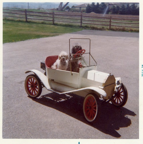 Carmel's mother Kim and Smokey 'drive' a little lawnmower-engine-powered Model T-style car – May, 1974