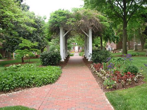 Salem college trellis leading to