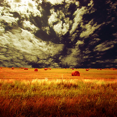 Eternity of the life (Claudio.Ar) Tags: friends light sky santafe argentina clouds square landscape skies searchthebest sony chapeau fields sensational legacy dsc pampa twop h9 magnumopus artcafe thecitadel 500x500 blueribbonwinner coth cruzadas supershot topf800 flickrsbest creativeimagery worldbest colorphotoaward citrit elitephotography theperfectphotographer sirhenryan