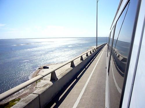 Rear View Ocean