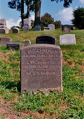 Eva_Schneider-Grave