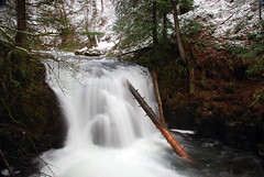 Top Falls about 30 feet from the Multnomah Falls Dropoff (Gigapic) Tags: landscape landscapes pfogold pfosilver