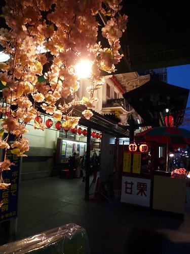 kabukiza*Sakura