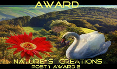 AWARD Natures Creations