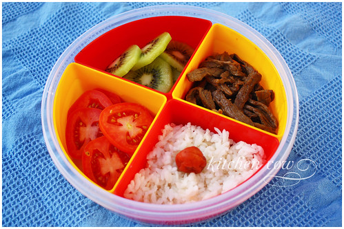 Partitioned Bento