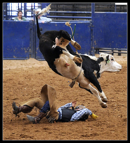 0322Rodeo3