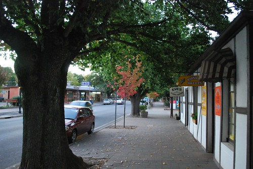 Autumn in Main Street, Hahndorf